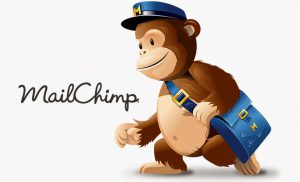 photo of the mail chimp icon