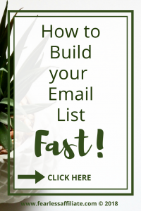 How To Build Your Email List Fast!