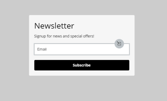 visual of the newsletter form